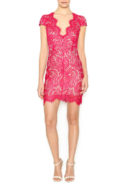 luxxel Scarlet Lace Mini Dress - Front full body