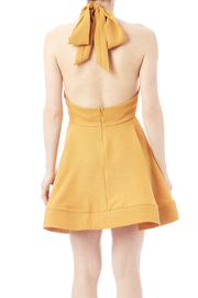 luxxel The Mandy Dress - Back cropped