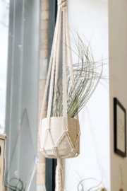 Kindred Mercantile Macrame Betty Spaghetti Plant hanger - Product Mini Image