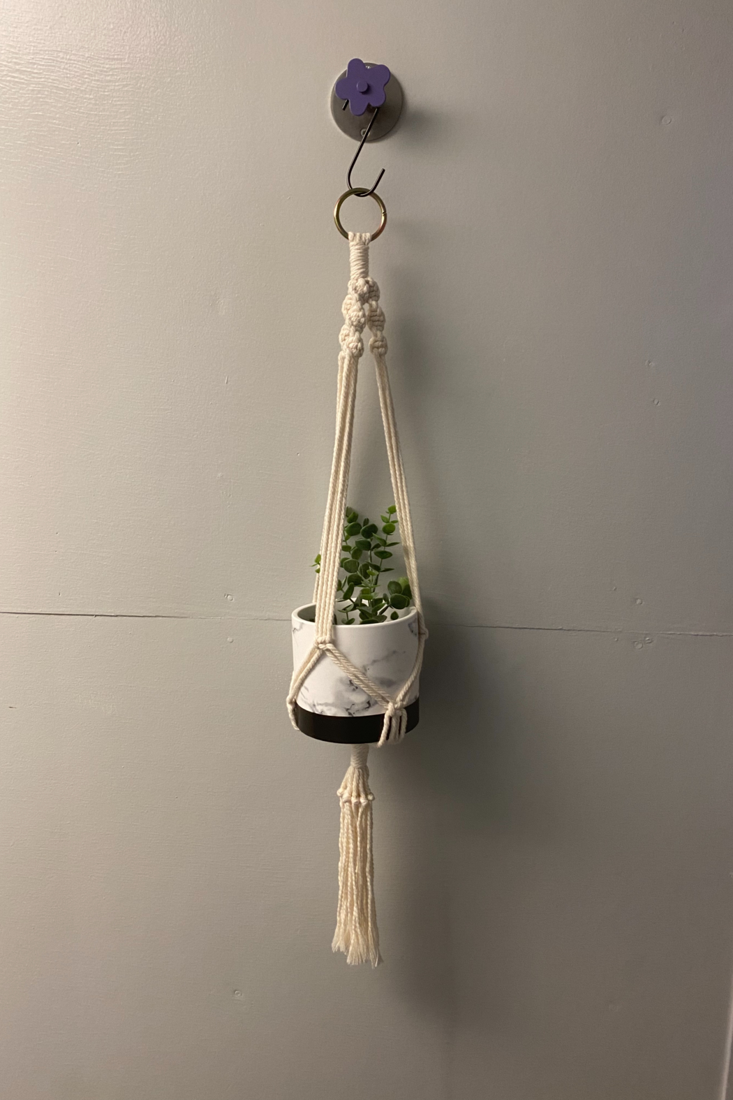 Creative Cords Macrame plant hangers local handcrafted - Front Cropped Image