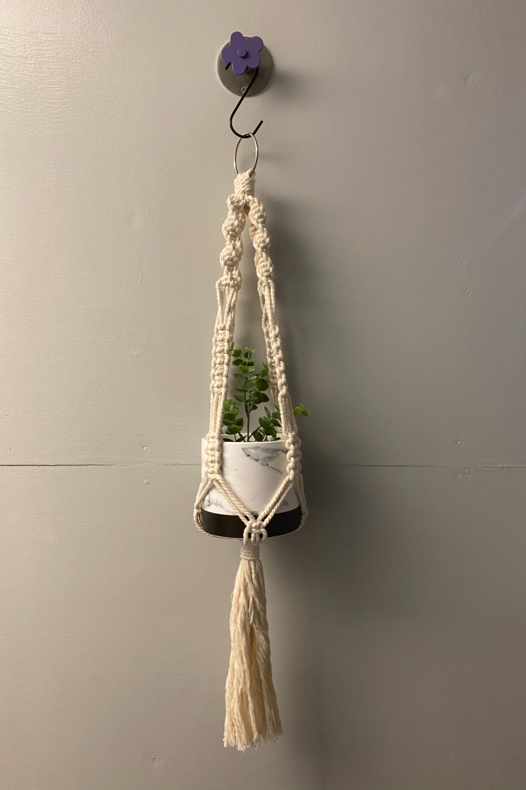 Creative Cords Macrame plant hangers local handcrafted - Main Image