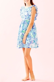 Lilly Pulitzer Madelina Dress - Back cropped