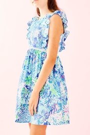 Lilly Pulitzer Madelina Dress - Front cropped