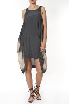 Shoptiques Product: Silk Dress