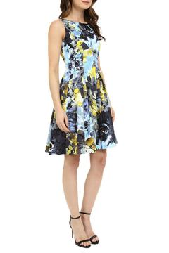 Shoptiques Product: Painted Blossom Fit & Flare