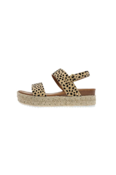Pierre Dumas Magic-1 Flatform Sandal - Product List Image