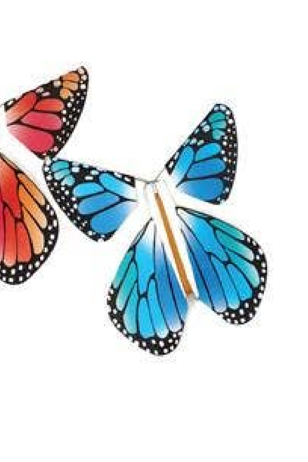 Tops Malibu  Magic Flying Butterfly- Rainbow - Front Full Image