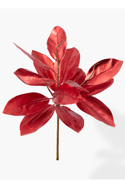 The Birch Tree Magnolia Leaf Red - Front cropped