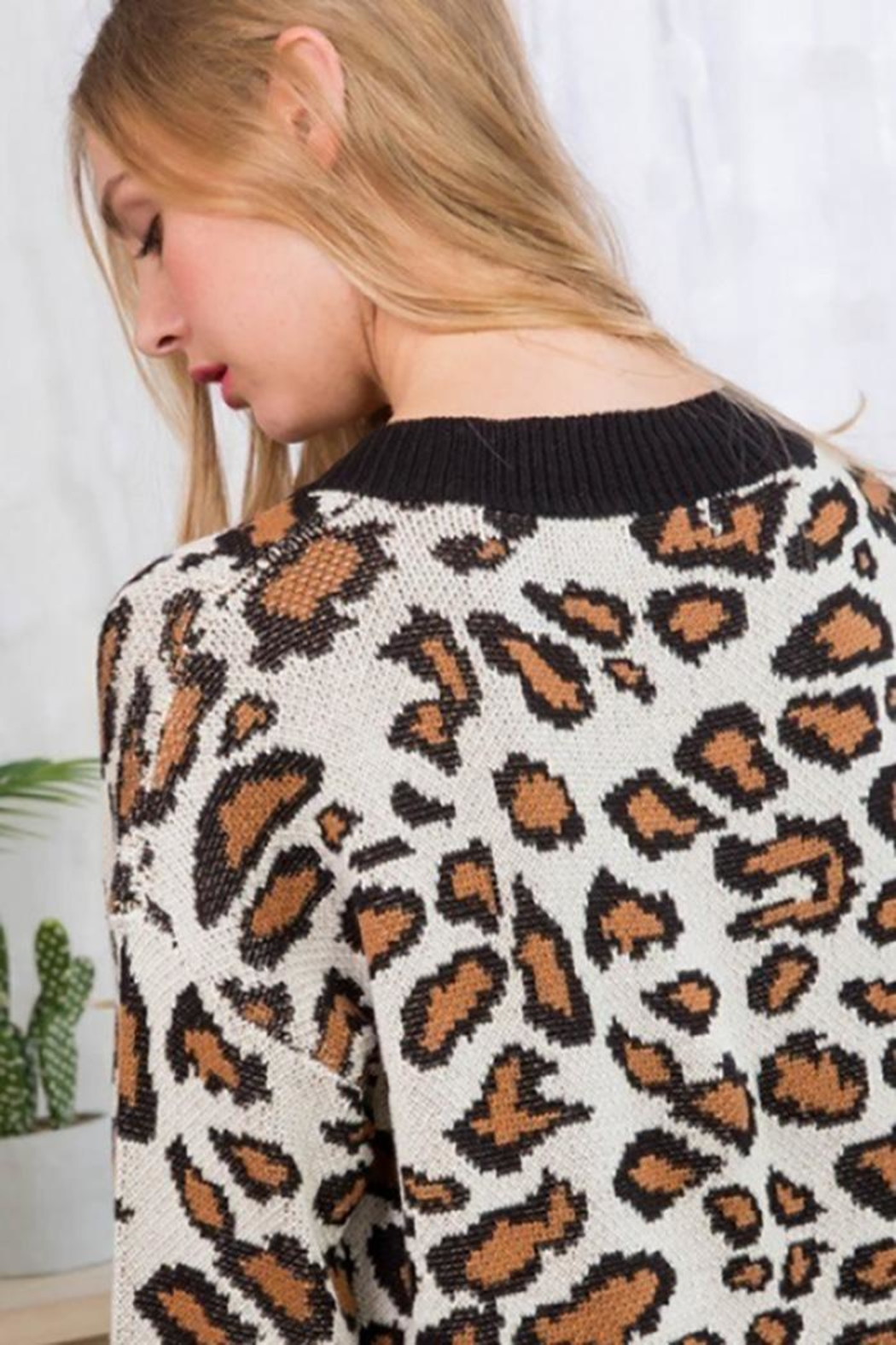Main Strip V Neck Leopard Print Sweater - Side Cropped Image