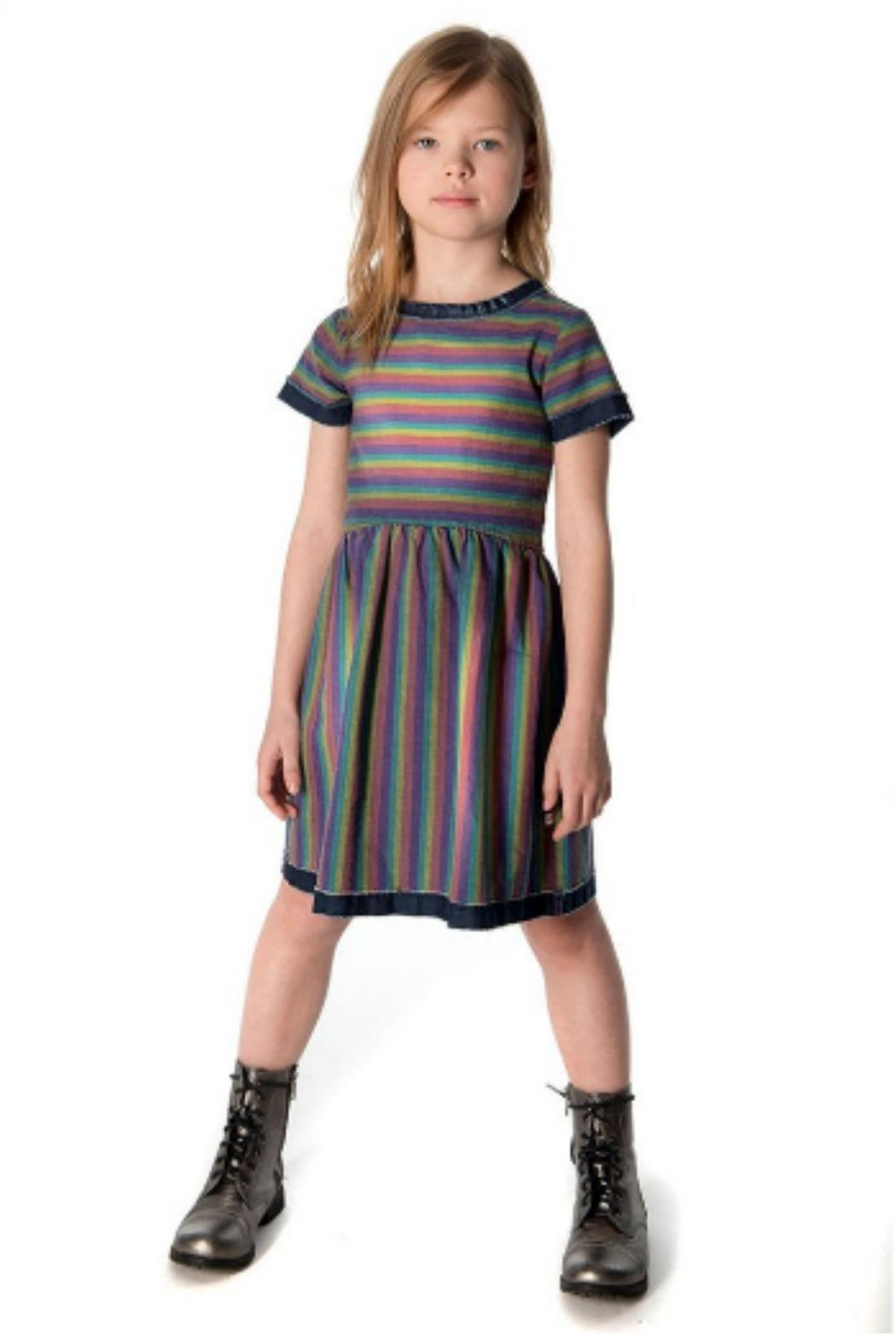 Appaman Maisy Dress - Front Cropped Image
