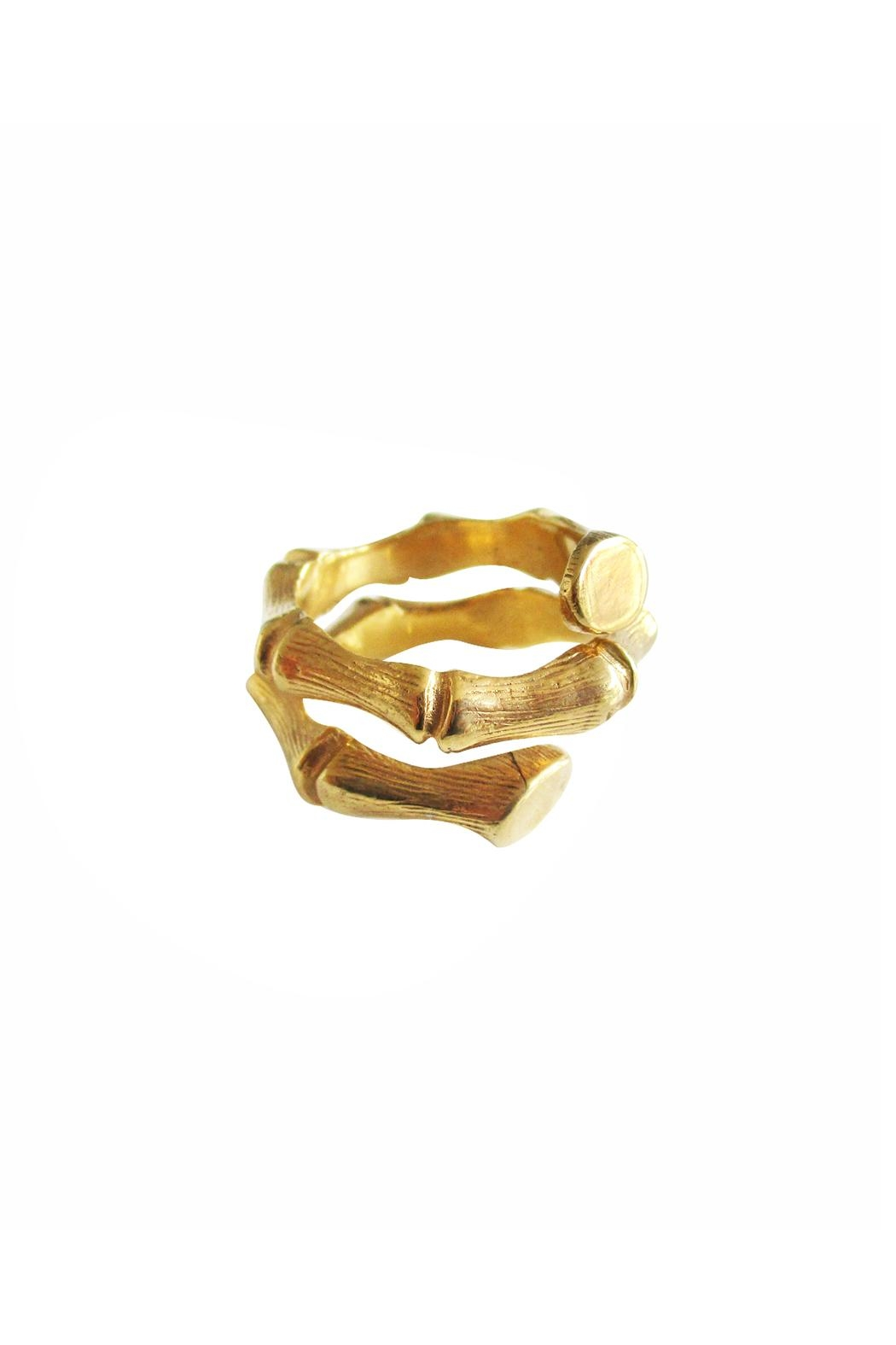 Malia Jewelry Gold Bamboo Ring - Front Cropped Image