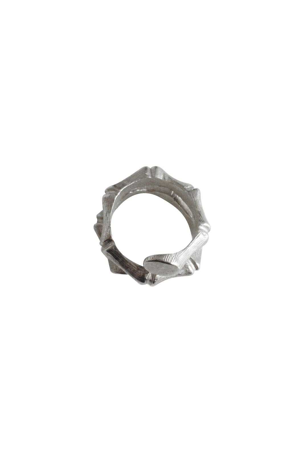 Malia Jewelry Silver Bamboo Ring - Side Cropped Image