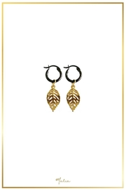 Malia Jewelry Tropical Black Hoops - Product Mini Image