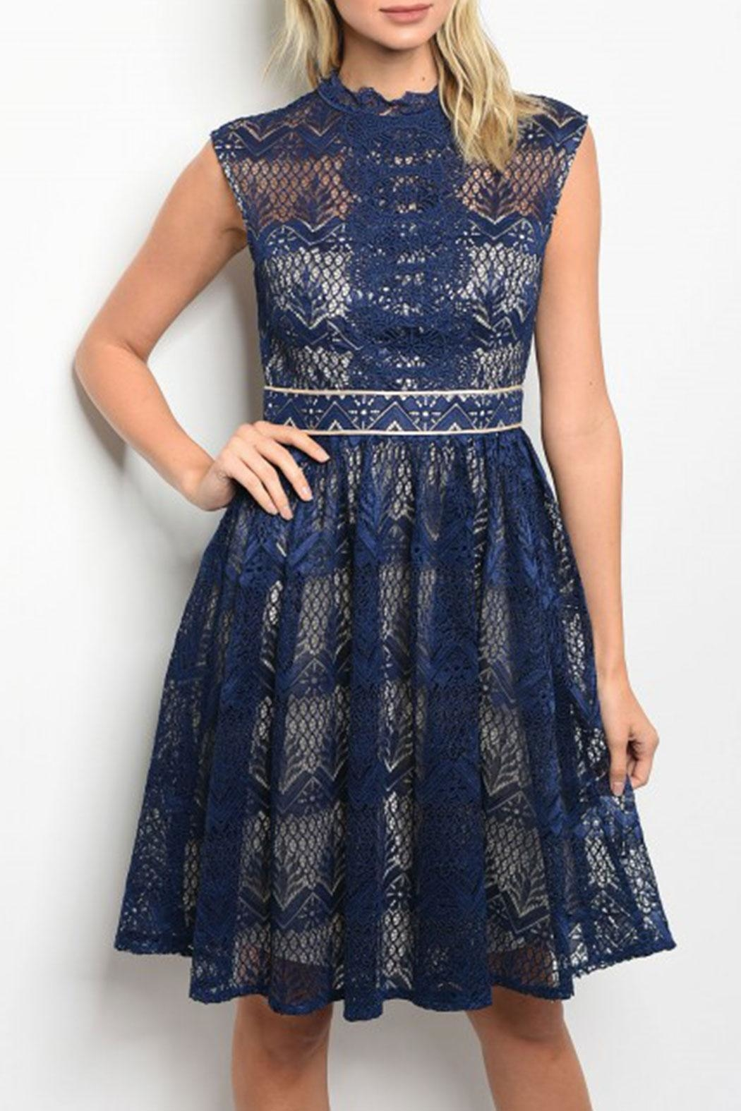 maniju Navy/nude Crochet Dress - Main Image