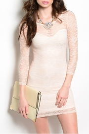 Manito Pink Sheer Dress - Product Mini Image