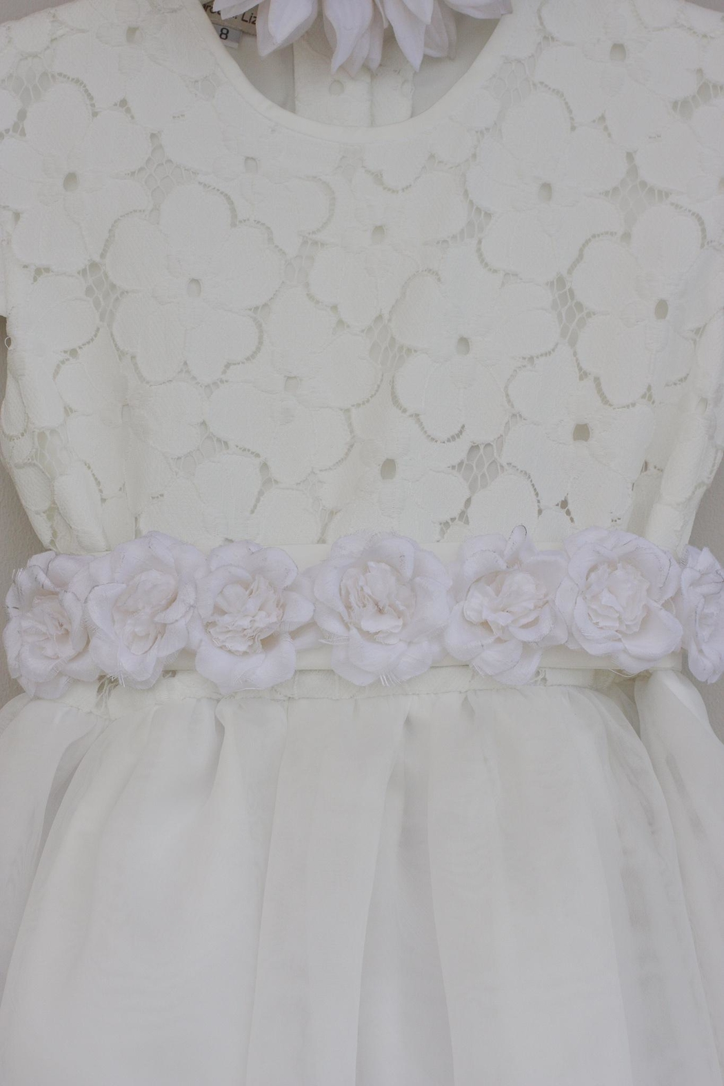 Marco&Lizzy Little Threads Silk Rose Dress - Front Full Image