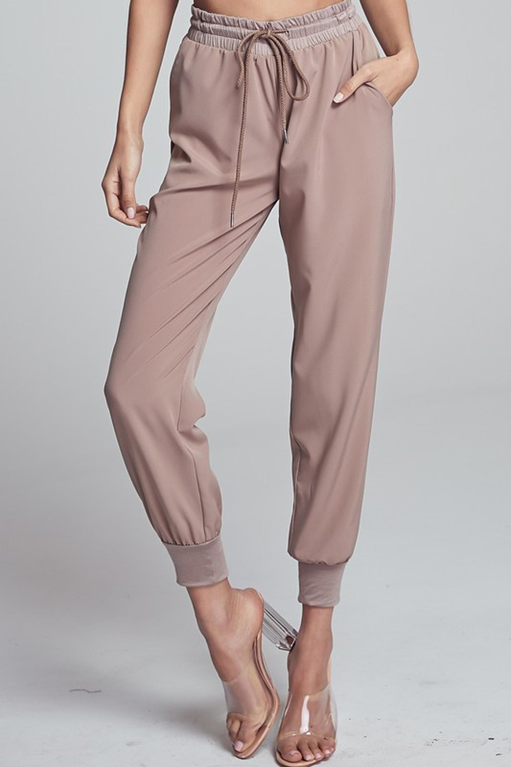 blue blush Marianne High-Waist Jogger - Front Cropped Image