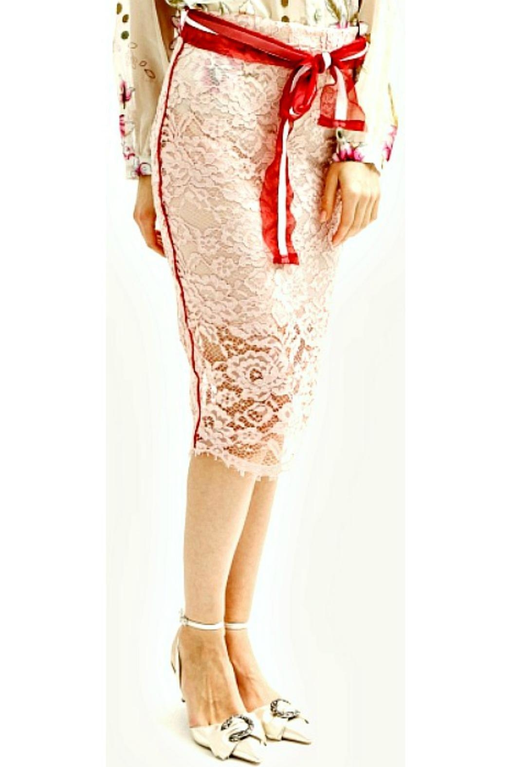 Maryley Pink Lace Skirt - Side Cropped Image