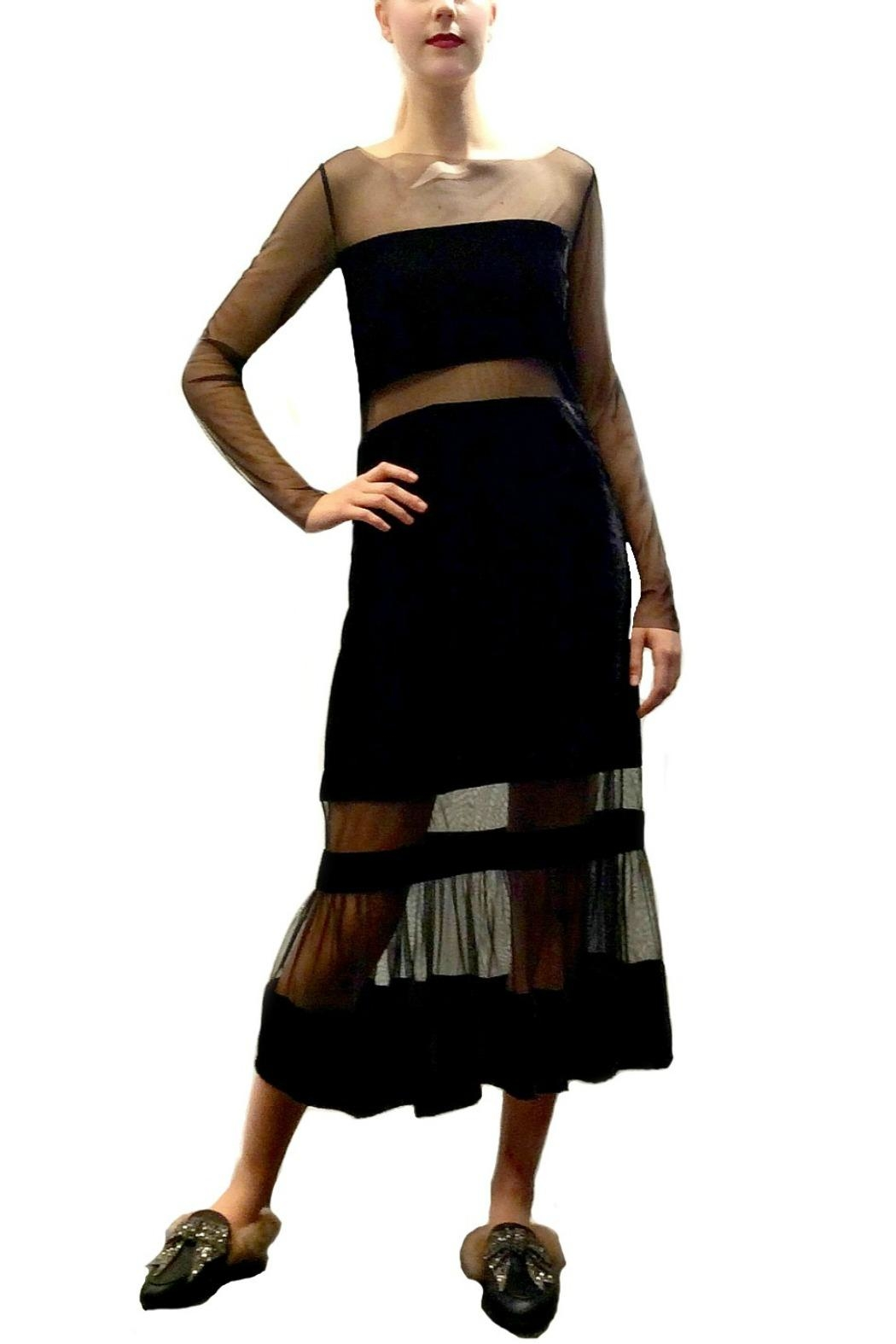 Maryley Velvet Tulle Maxi - Front Cropped Image
