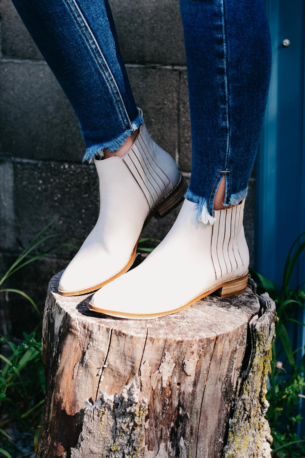 Ccocci Mattie Ankle Boot - Front Full Image