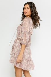 Olivaceous  Mauve Beauty - Side cropped