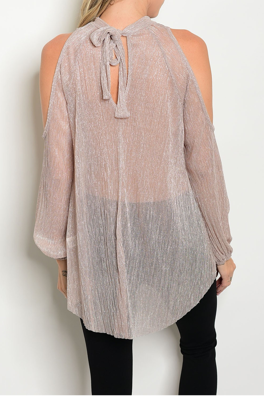 Sweet Claire Mauve Metallic Sheer Top - Front Full Image
