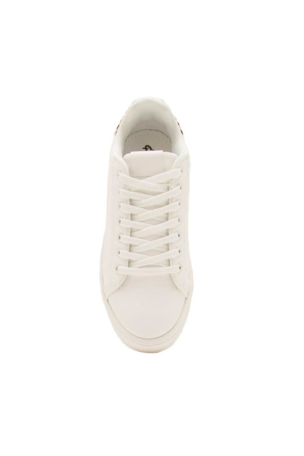 Qupid Maxmino Lace-Up Sneaker - Back Cropped Image
