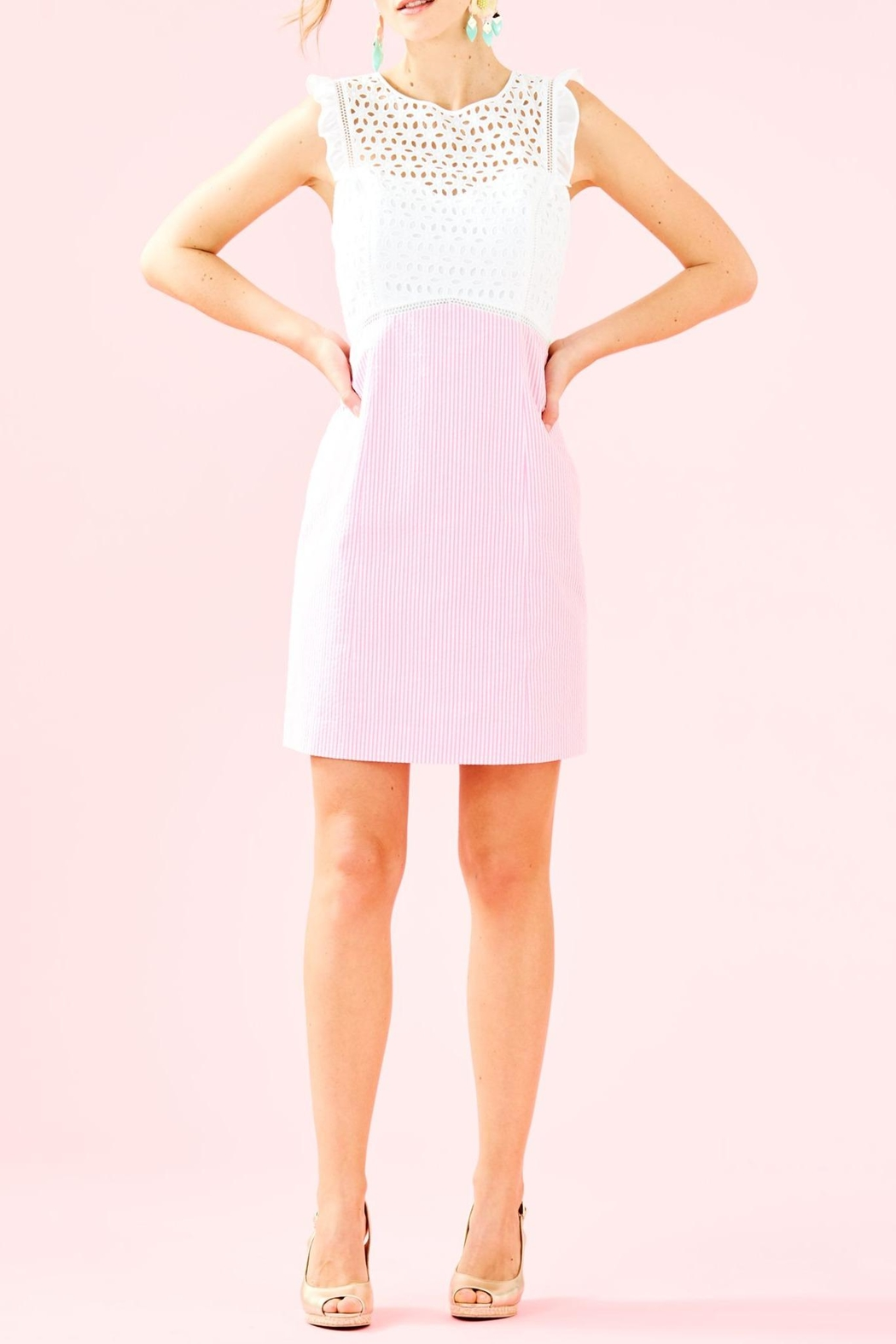 Lilly Pulitzer Maya Shift Dress - Back Cropped Image