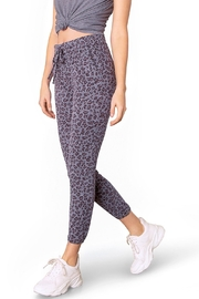 BB Dakota  Meow Safair Loungepant - Product Mini Image