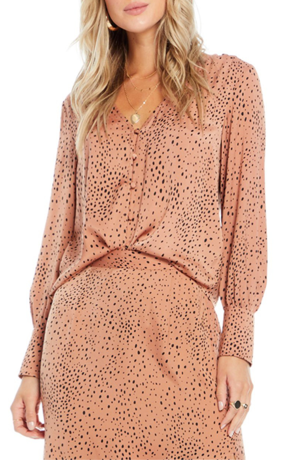 Saltwater Luxe Mercy Button Front Blouse - Front Cropped Image