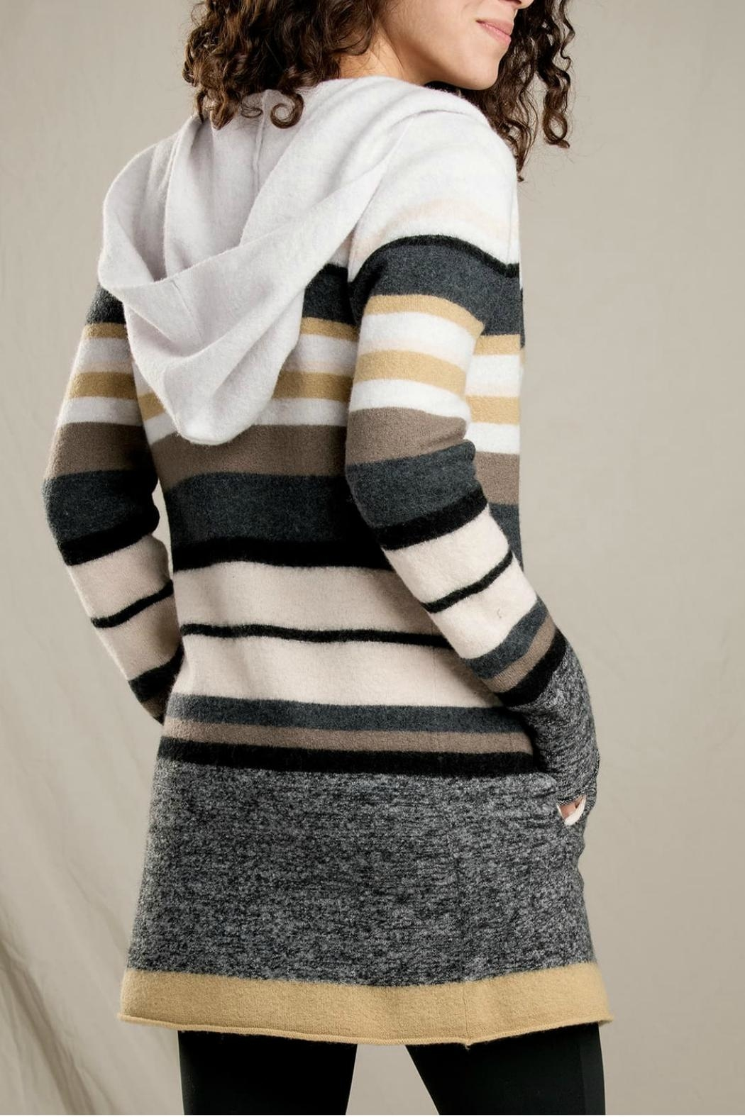 Toad & Co. Merino Striped Hoodie - Front Cropped Image