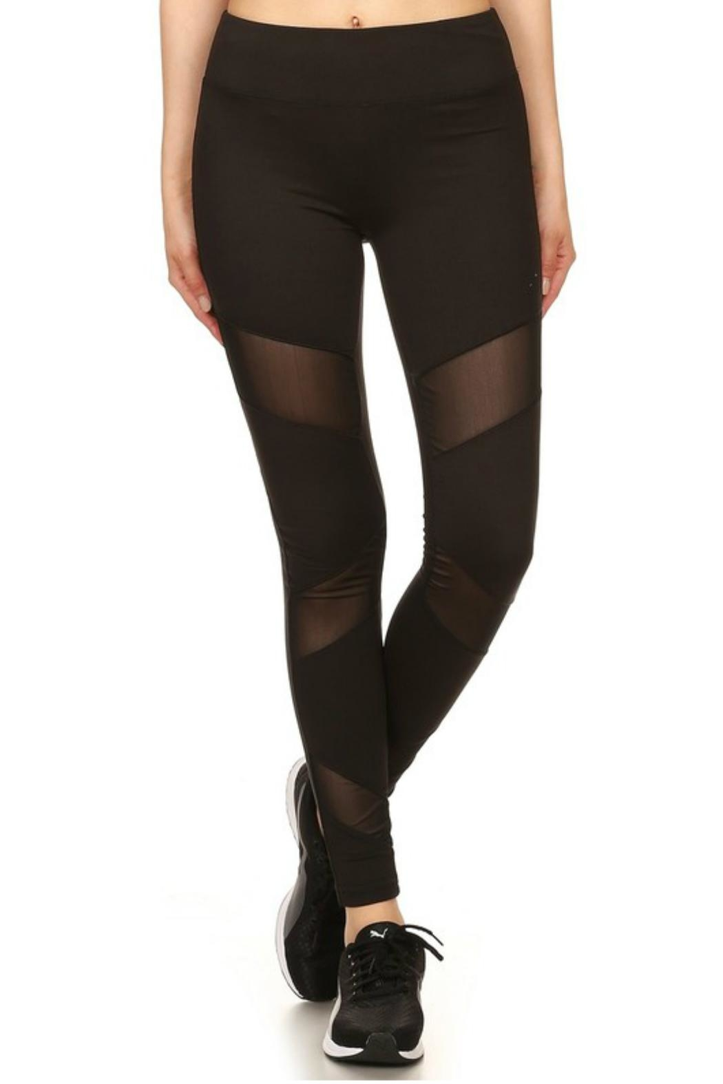 Minx Mesh Panel Leggings - Front Cropped Image