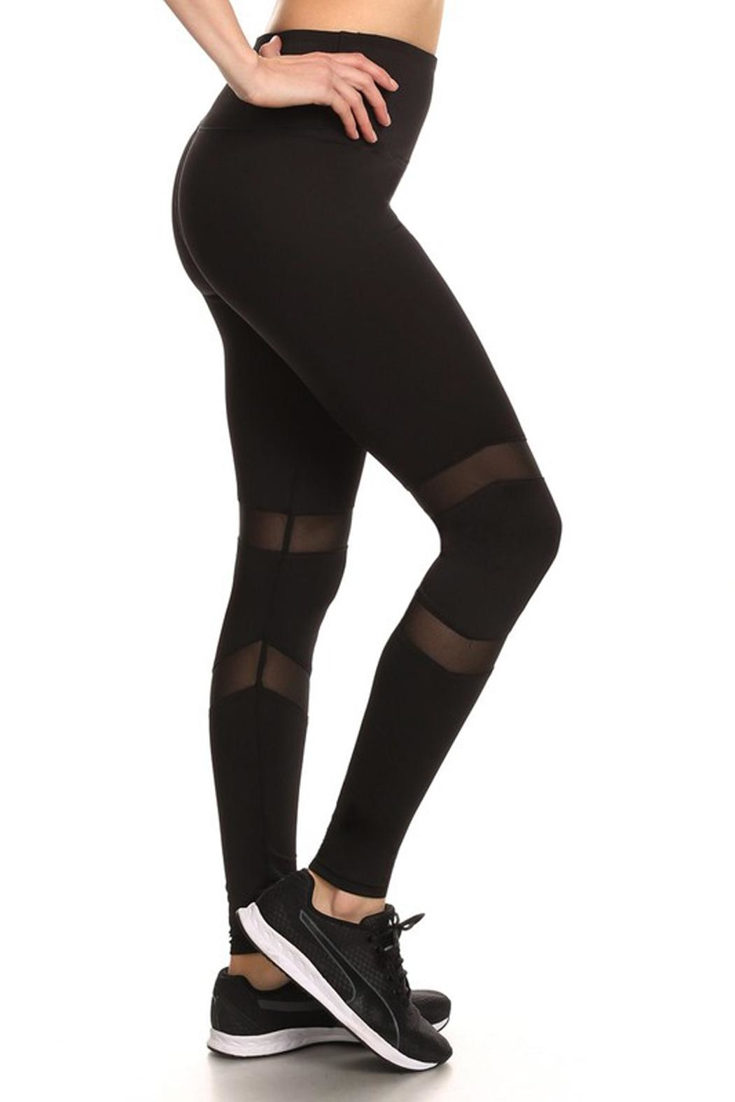 New Mix Mesh Panel Pants - Side Cropped Image