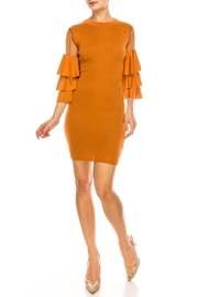 Jealous Tomato Mesh Sleeve Dress - Product Mini Image