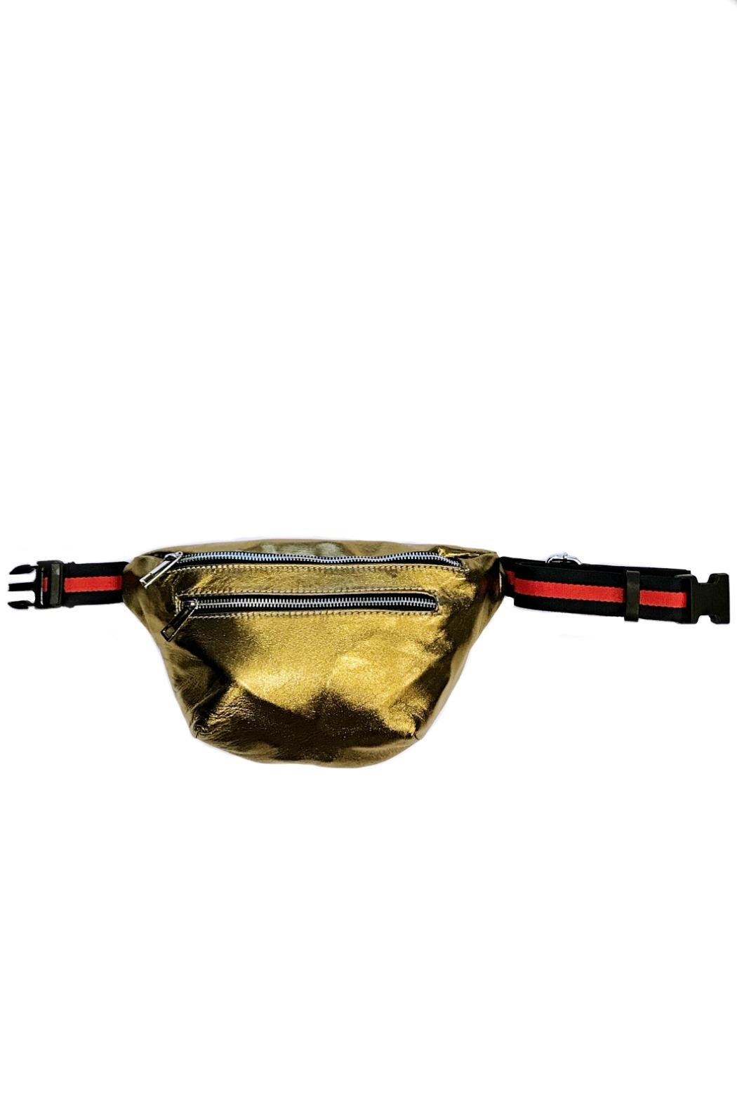 Leather Country Metallic Fanny Bag - Front Cropped Image