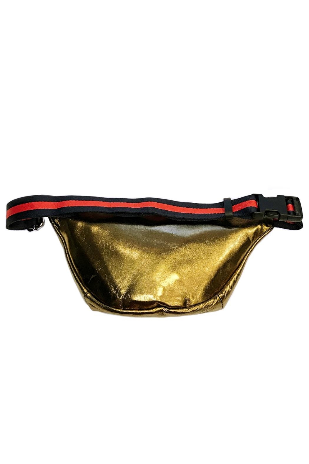 Leather Country Metallic Fanny Bag - Front Full Image