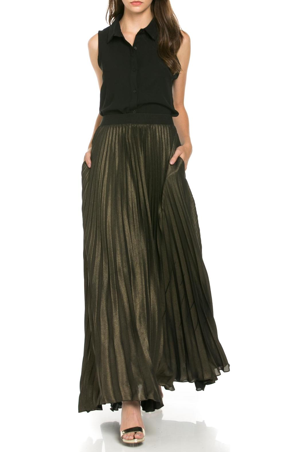 MHGS Gold Pleated Maxi - Back Cropped Image