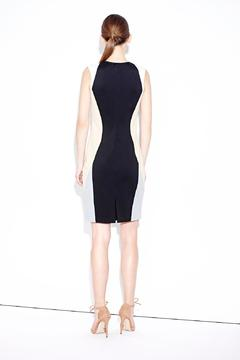 Shoptiques Product: Fitted Paneled Dress
