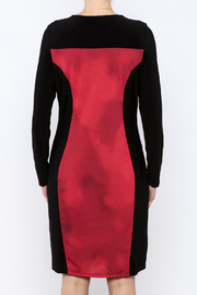 Michael Tyler Collections Panel Dress - Back cropped