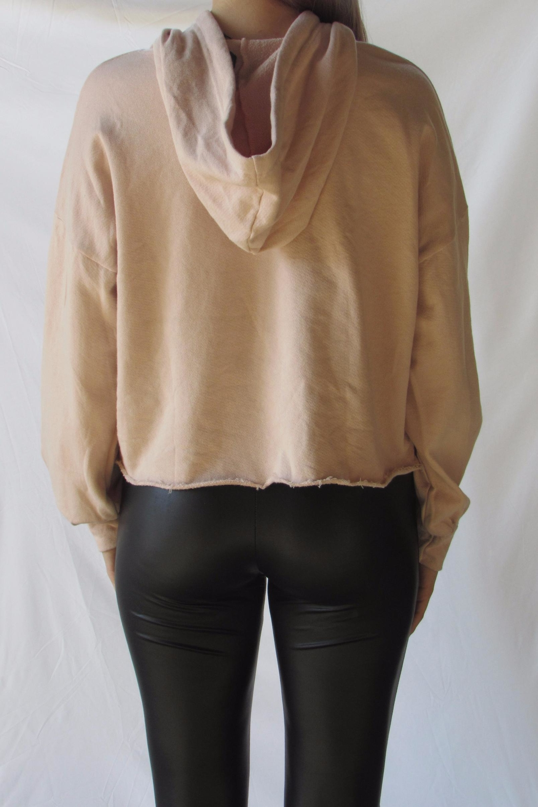 Michelle Blush Oversized Hoodie - Back Cropped Image