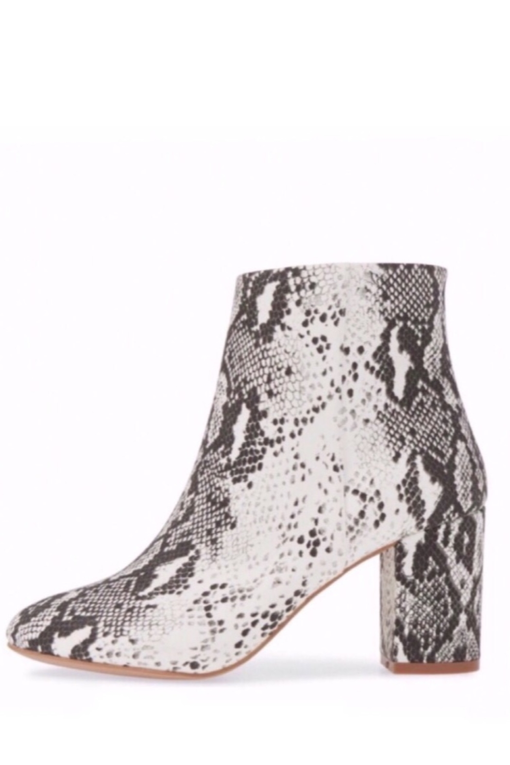 Band Of Gypsies Micro Suede Snake Print Vegan Booties - Side Cropped Image