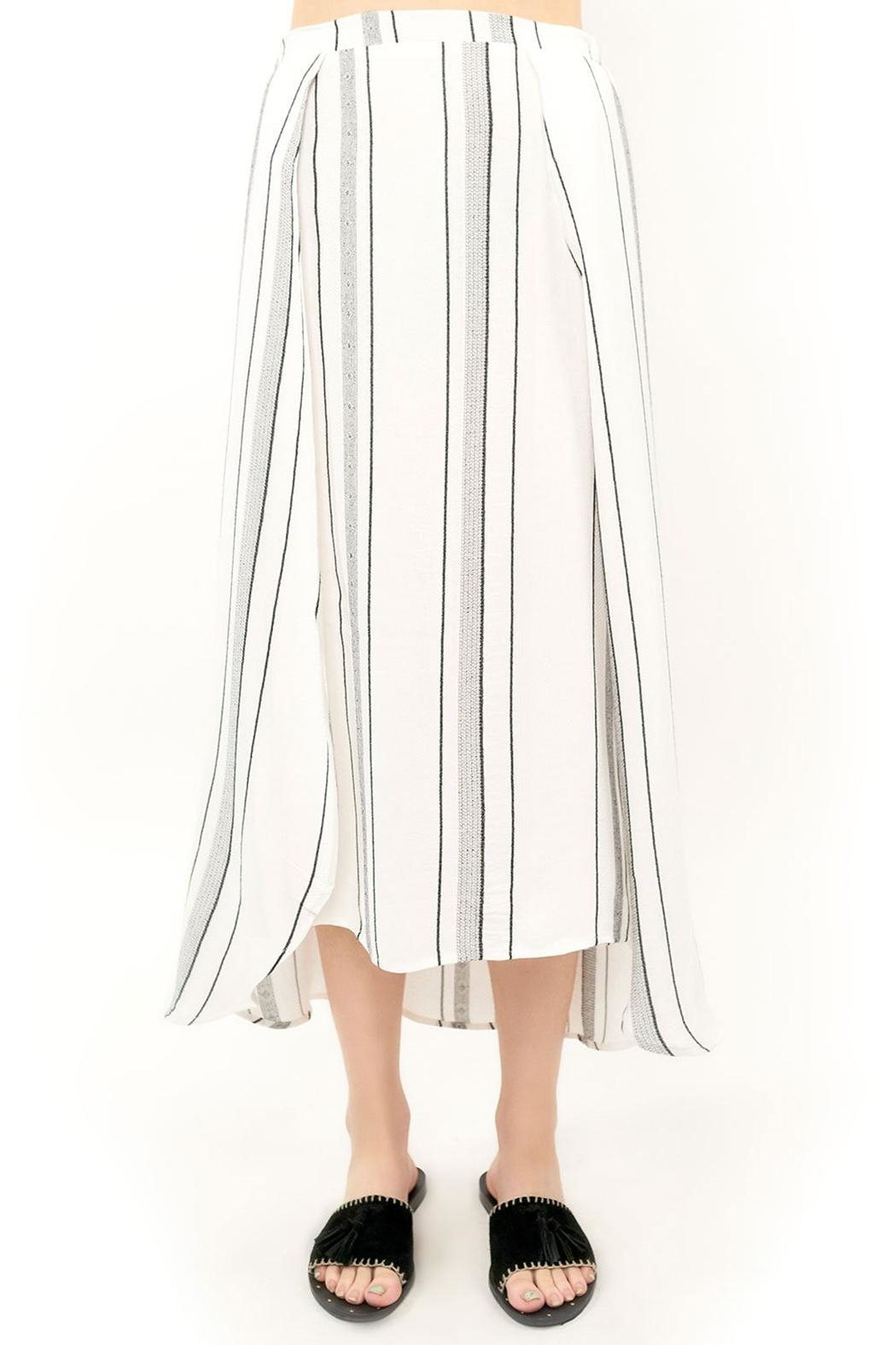 Saltwater Luxe Midi Skirt - Front Cropped Image