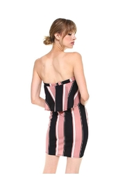 Miley and Molly Bold Stripe Flounce Tube Bodycon Dress - Back cropped