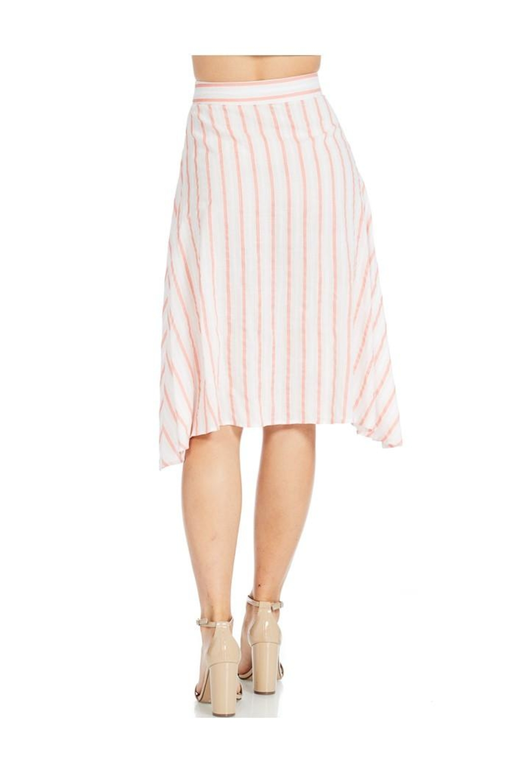 Miley and Molly Linen Stripe Button Front A-Line Midi Skirt - Back Cropped Image