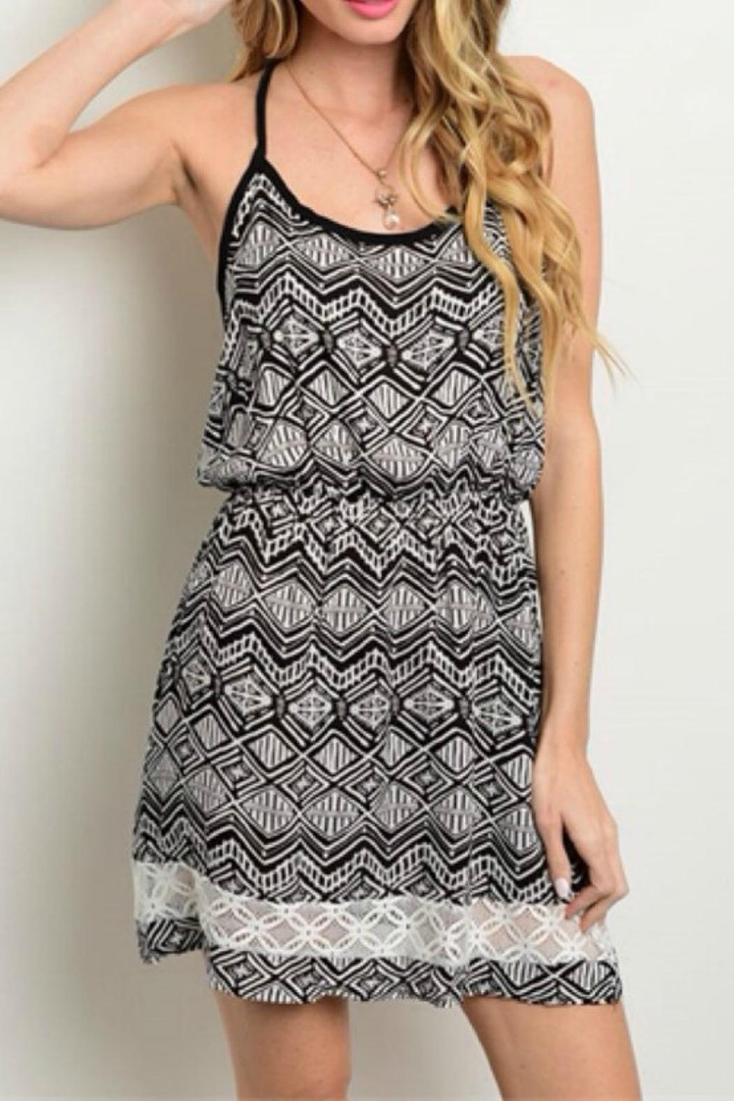 Millibon Printed Dress - Front Cropped Image