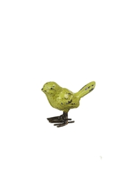 Midwest CBK Mini Colorful Bird-Collection - Front cropped