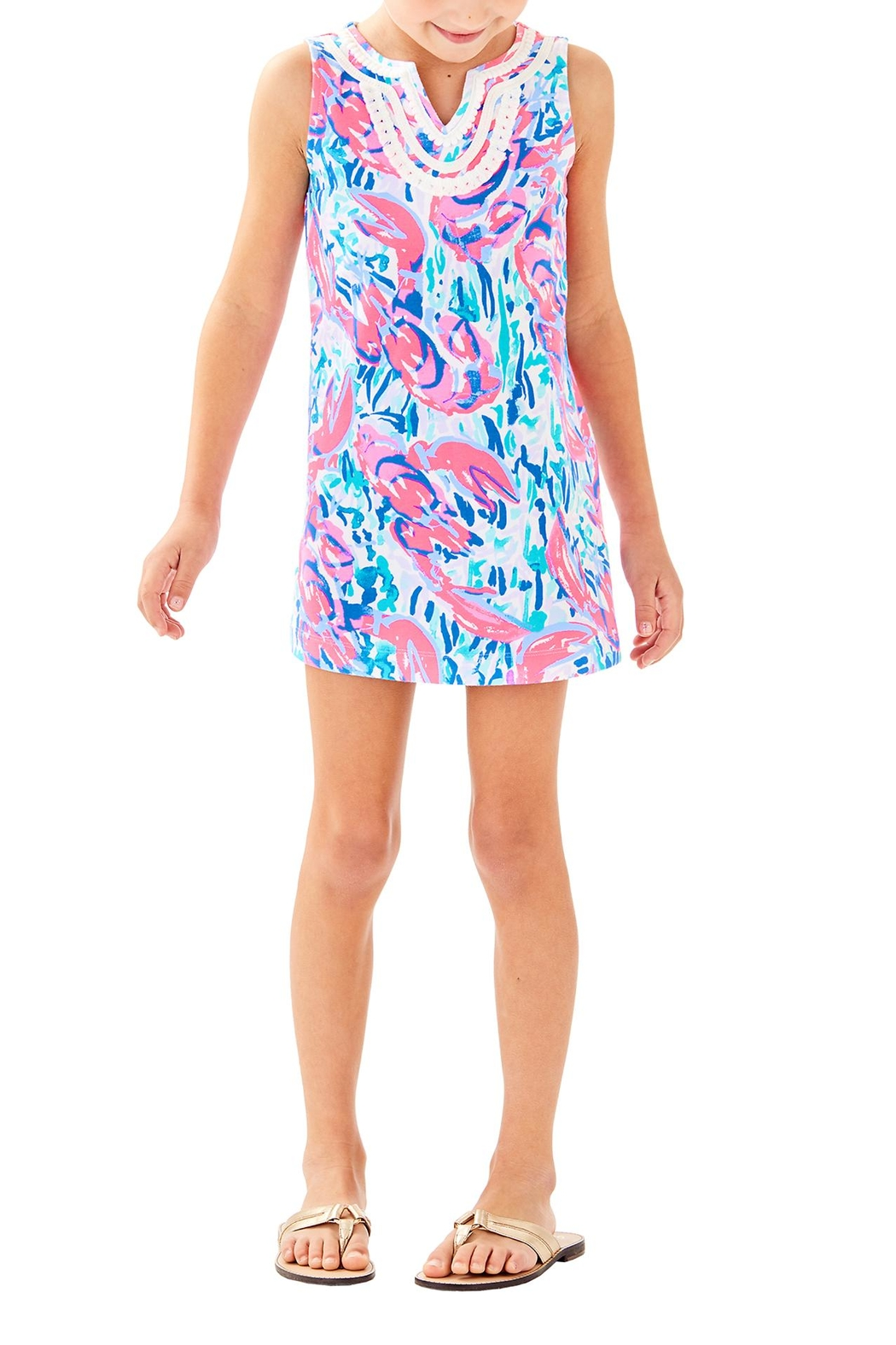 Lilly Pulitzer Mini Harper Shift - Front Cropped Image