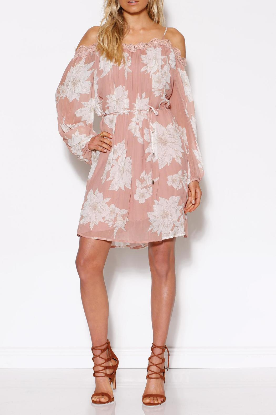 Ministry of Style Bliss Dress - Main Image