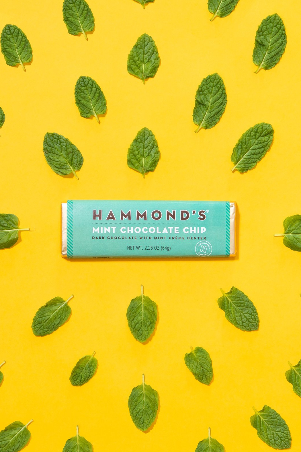 Hammond's Candies MINT CHOCOLATE CHIP CHOCOLATE CANDY BAR - Front Full Image