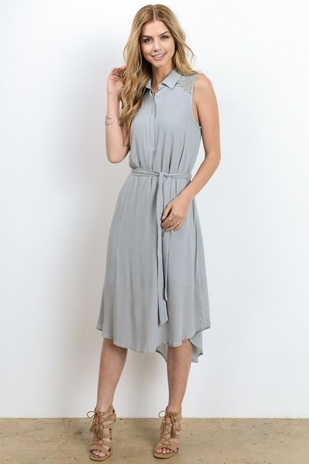 Doe & Rae Minty Gray Dress - Back Cropped Image